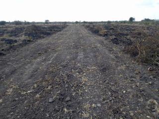 Residential Land For Sale In Ruiru