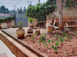 4 Bedrooms Townhouse For Sale In Ruaka